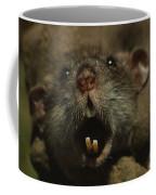 Close Up Of A Rats Fast-growing Teeth Coffee Mug