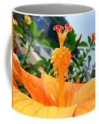 Close Up Of A Rose Mallow Coffee Mug