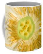 Close-up Of American Lotus Nelumbo Lutea Coffee Mug