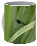 Close-up Of Dragonfly Perched On Leaf Coffee Mug