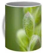 Close-up Of Flower Buds Coffee Mug