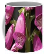 Close Up Of Foxglove Digitalis Flowers Coffee Mug by Darlyne A. Murawski