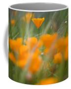 Close Up Of Orange Poppy Flowers Coffee Mug