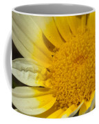 Close Up Of The Inside Of A Yellow And White Sun Flower Coffee Mug
