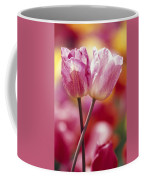 Close-up Of Tulips Coffee Mug