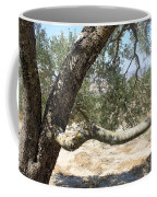 Close Up Olive Tree Coffee Mug