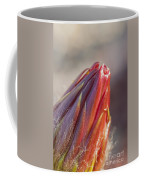Close Up On Cactus Flower Bud Coffee Mug