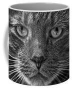 Close Up Portrait Of A Cat Coffee Mug