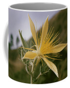 Close-up View Of A Blazing Star Coffee Mug