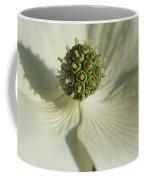 Close View Of A Dogwood Blossom Coffee Mug