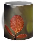 Close View Of A Leaf Coffee Mug