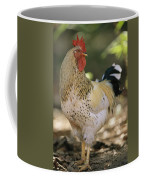 Close View Of A Rooster Coffee Mug