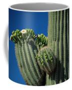 Close View Of A Saguaro Cactus Saguaro Coffee Mug