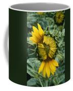 Close View Of A Sunflower Blossom Coffee Mug