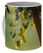 Close View Of A Tree Branch And Leaves Coffee Mug