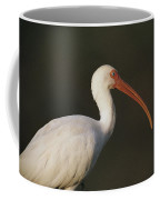 Close View Of A White Ibis Coffee Mug