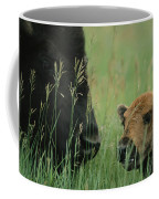 Close View Of An American Bison Coffee Mug
