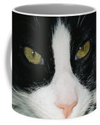 Close View Of Black And White Tabby Cat Coffee Mug