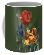 Close View Of Blossoming Tulips Coffee Mug