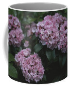 Close View Of Flowering Mountain Laurel Coffee Mug
