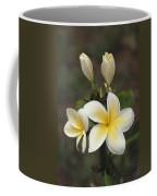Close View Of Frangipani Flowers Coffee Mug