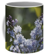 Close View Of Hyacinth Lilacs Syringa Coffee Mug