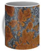 Close View Of Orange Lichen Growing Coffee Mug by Stephen Sharnoff