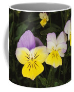 Close View Of Pansy Blossoms Coffee Mug