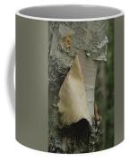 Close View Of Paper-birch Bark Coffee Mug