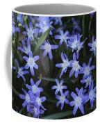 Close View Of Spring Flowers Coffee Mug