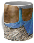 Close View Of The Feet Of A Blue-footed Coffee Mug by Tim Laman
