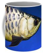 Closeup Of A Fish Coffee Mug