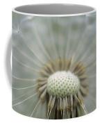 Closeup Of Dandelion Seed Head Coffee Mug