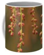 Closeup Of Pollen Tendrils Hanging Coffee Mug by Phil Schermeister