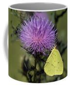 Cloudless Sulphur Butterfly Din159 Coffee Mug