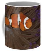 Clownfish In Purple Tip Anemone Coffee Mug