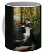 Co Wicklow, Ireland Waterfalll Near Coffee Mug