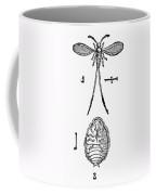 Cochineal Insect Coffee Mug