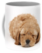 Cockapoo Pup Coffee Mug