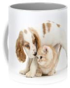 Cocker Spaniel And Kitten Coffee Mug