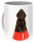 Cocker Spaniel Pup In Doggy Dish Coffee Mug