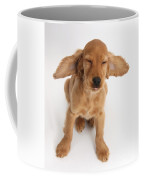 Cocker Spaniel Puppy Making A Face Coffee Mug