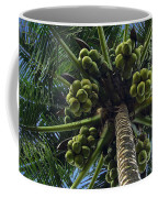 Coconut Palm Coffee Mug
