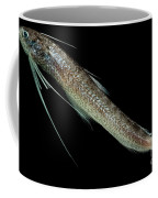 Codlet Coffee Mug