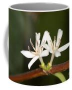 Coffee Flowers Coffee Mug