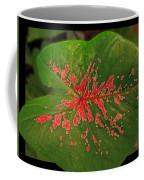 Colius Leaf Coffee Mug