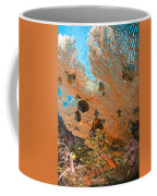 Collare Butterflyfish Coffee Mug