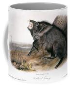 Collared Peccary, 1846 Coffee Mug