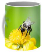 Collecting Coffee Mug
