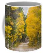 Colorado Autumn Aspen Road Boulder County Coffee Mug